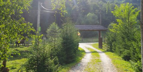 A-Camp Blackout 011
